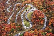 Incredible Twisties / by Cindy Magee