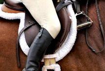 Equestrian / by Brandy Gourley