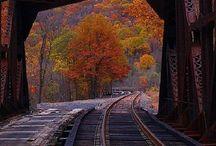 BRIDGES / by the hamandjam south