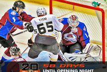 Ducks Countdown Photos / A collection of the various #NHLDucks countdown photos as we near the 2013-14 NHL season. / by Anaheim Ducks