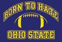 Maize & Blue / We're from Ohio but we love those Wolverines and the great state of Michigan! / by Tonya Turpin