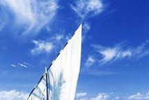 Sailing / by Vicki Defoore