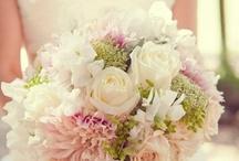 wedding / by Nicole Kerfoot