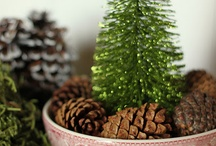 Christmas / by Jen Steele