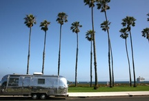 My Sweet Airstream  / Ideas for my trailer / by Tracy 'n' Hailey Edwards