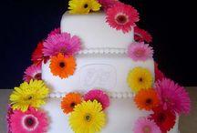 wedding cakes / by finola borgese