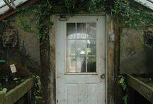 garden / by Danni Papazoglou