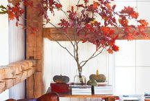 Holiday Home / by Shana Kaye Jones
