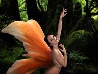 Fairies / by Cindie Rose