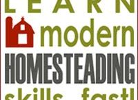 Homesteading / by Erin Donn