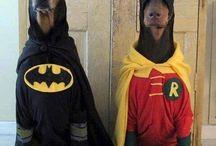 Dog Halloween Costumes / by Radio Fence