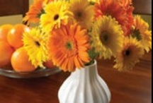 Inspirations: Milk Glass / by Rose of Sharon Floral Designs, Althea Wiles