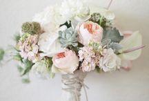 Flowers / by Emmaleigh Hoard