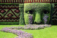 Gardening / by Fresh Faced Skin Care