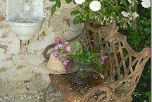 A Backyard Adventure! / Well...hec...a girl can dream, can't she? / by Jill Lindauer