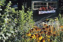Garden Sheds / Lovely garden sheds / by Susan Kraner