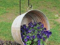 Garden ideas / by Nicki Peterson