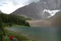 Ski Canadian Rockies / Ski Vacation, Rockies, Alberta Rockies, Skiing, Travel, Mountain Adventure, Adventure Travel, Rocky Mountain, Powder, Canadian Rockies, Scenery, Awe Inspiring / by Powder Matt