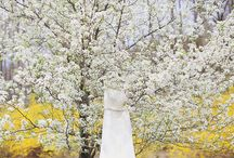New Jersey Wedding in the Spring / by Forever Photography