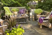 My garden / by Jackie C K
