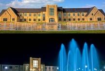 TU Alumni / Univ of Tulsa.  1981-1984 Elem Ed. BA. Degree / by Anne Rudy