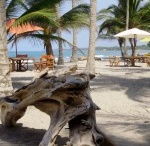 Eco Hotels in Colombia / by Colombia Eco Travel