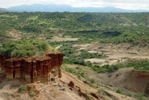 Amazing Places / by The Leakey Foundation