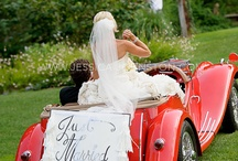 My Wedding / weddings, bride, flowers, ideas, pictures / by Katie Grabner