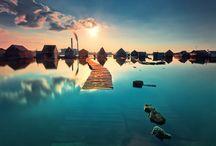 Meet Me Here..... / by Pamela Pilver