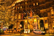 Hotels/Inns: let's travel!! / by Kathy Robins