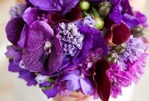 Wedding:  Flowers et al / by Barbara Lozada