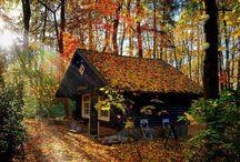 fall|winter / by Eva Muse