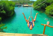 Travel Tips | Tips de Viajes  / Discover the best tips for your next Cancun & Riviera Maya vacation.  _________________________________________________________________________________________________________________  Descubre los mejores consejos y tips de viaje para tus próximas vacaciones en Cancún y la Riviera Maya.  / by Xcaret Park
