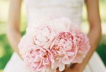 Wedding Photo Ideas / by Kelly Martinez