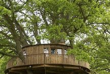 Tree Houses / by Penny Raio