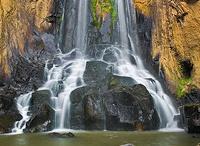 Steams , Rivers & Waterfalls / by Dan Foglia