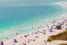 Sarasota / Sarasota is a lovely Place / by Sister Cities Association of Sarasota