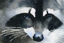 Raccoon Cuties / by Lorrie Scott