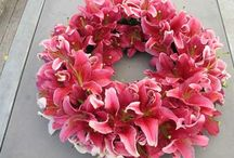 DIY WREATHS  / FLORAL, CRAFT. HOLIDAY, ANY TYPE OF WREATH / by Cheryl Marsh