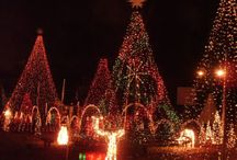 'Tis the Season to be Jolly / All things Christmas / by Marin Library
