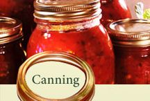 Canning & Preserving & Freezing / by Marlena Melendez Hawk