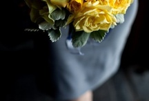 Wedding ideas / by Jen Burke