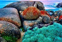 Australia New Zeland / by Costanza Carbone