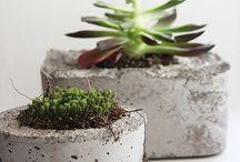 Concrete / by Joanna Bongard