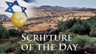 Scripture of the Day / by CUFI