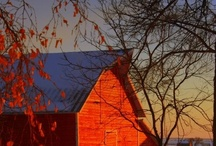 Barns Are the Best / by Susan Anderson