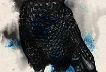 Black Birds & Ravens / by Meg Cupman