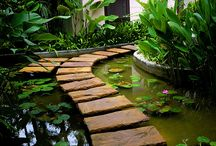 My Dream Balinese Style Home and Garden / by Donna