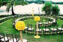 fun wedding ideas  / by Laura Terwilliger