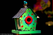 Bird Houses / by Laurie B